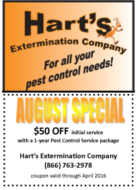 august_special_$50_840x525