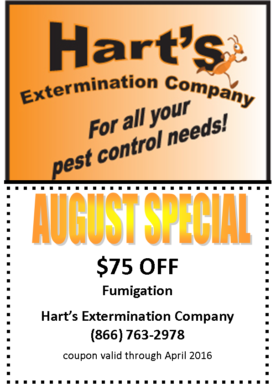 august_special_$75_840x525