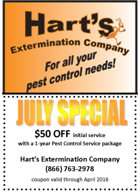 july_special_$50_840x525