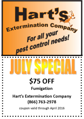 july_special_$75_840x525