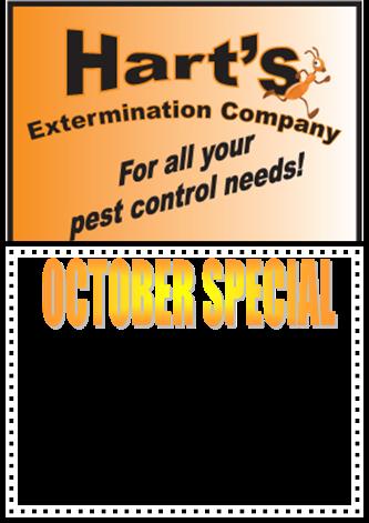 oct_special_75_840x525